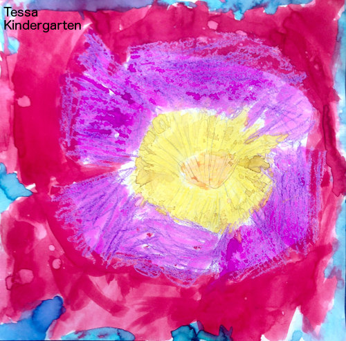 Tessa, big flower